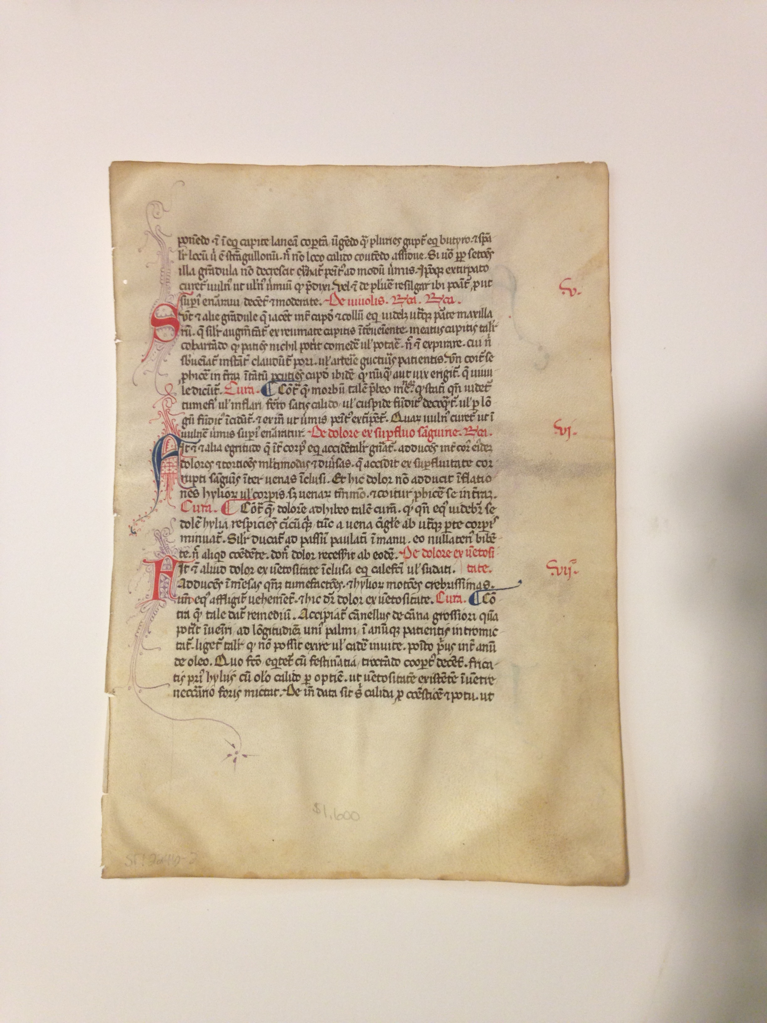 The manuscript leaves are finely rubricated in red and blue with incipits, paragraph marks, chapter numbers in the outer margin, and fine initial letters with penwork embellishments in red or purple.