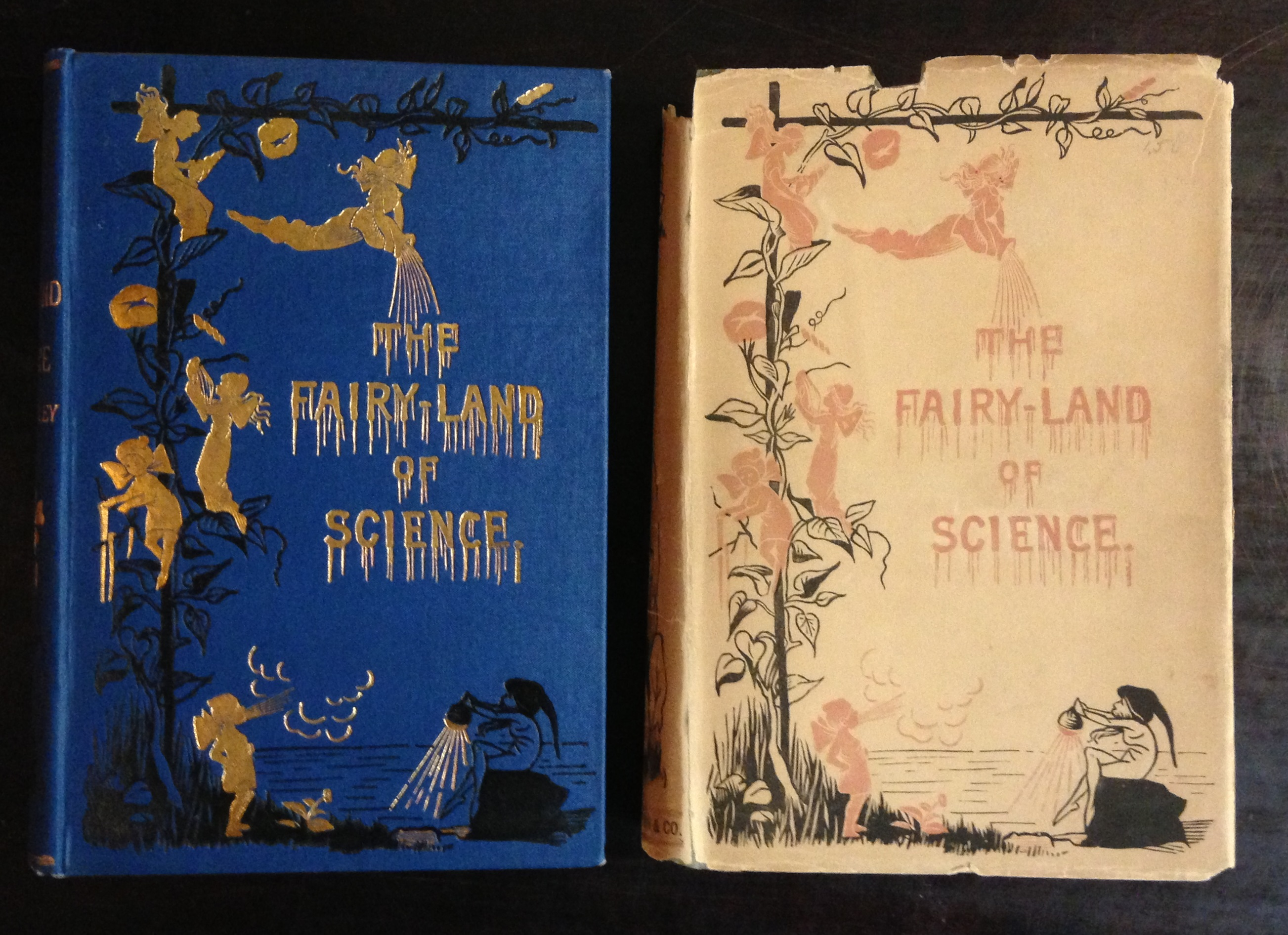 The dust jacket on Arabella Buckley's The Fairy-Land of Science (New York: D. Appleton, 1881) is a very early example of a design which closely replicates in print the elaborate publisher's cloth binding, here stamped in gilt and black ink.